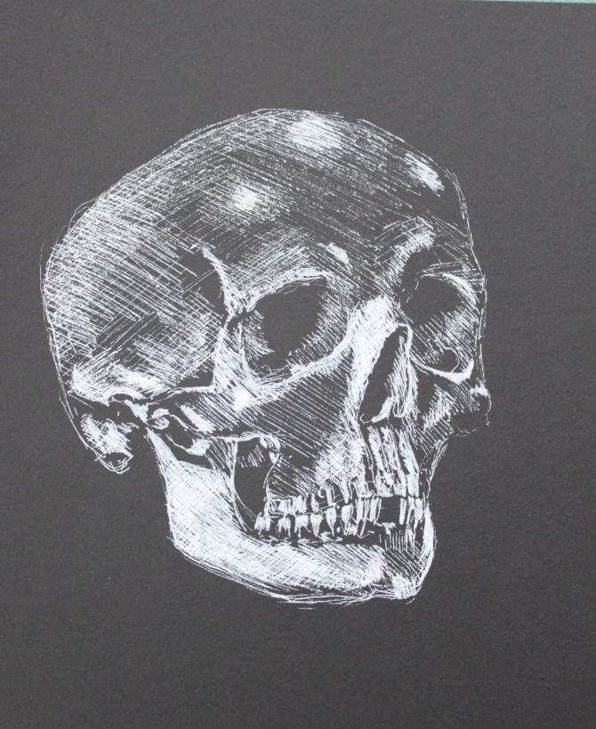 phrenology-skull-ink